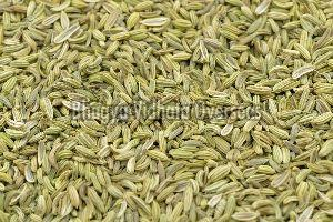 Premium Fennel Seeds