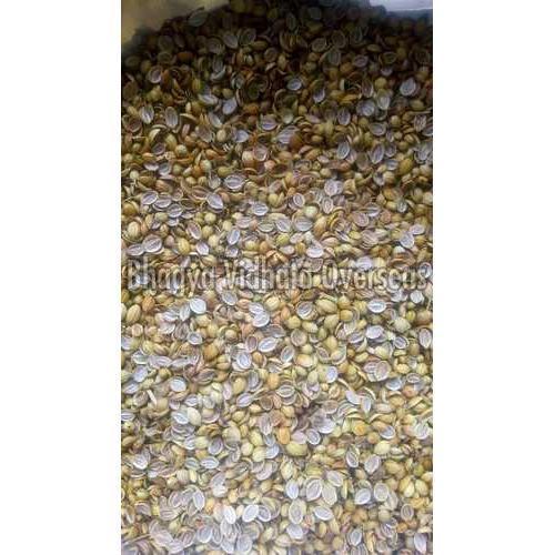 Scooter Split Coriander Seeds