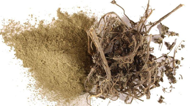 Dry Bhringraj Powder