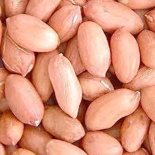 Natural Groundnut Kernels