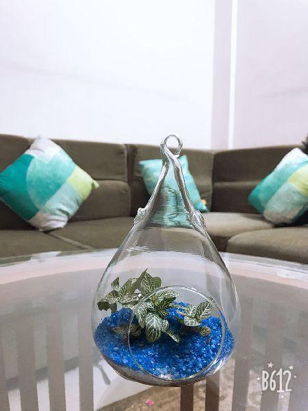 Borosilicate Glass Terrarium 05