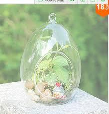 Borosilicate Glass Terrarium 17
