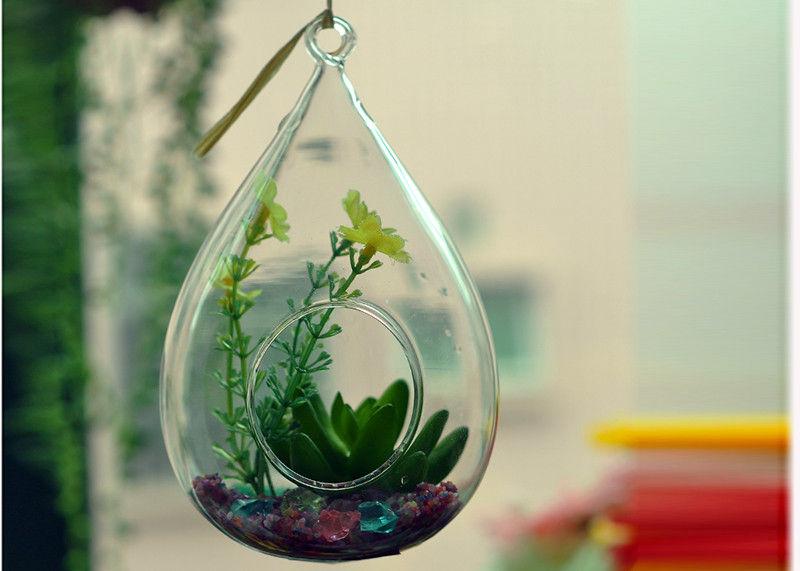 Borosilicate Glass Terrarium 19