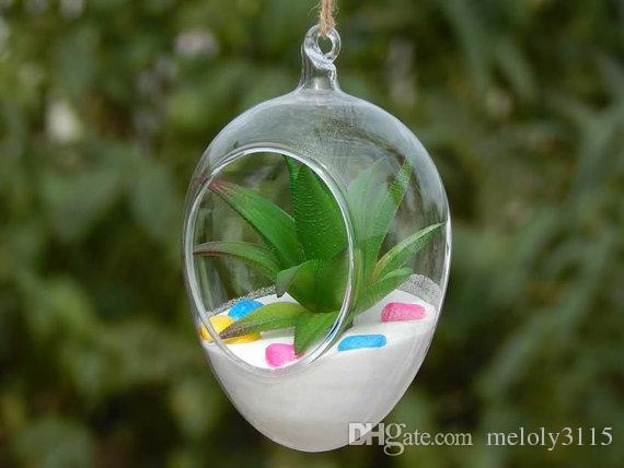 Borosilicate Glass Terrarium 21