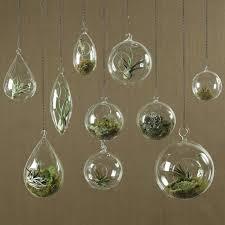 Geometric Glass Terrarium 01