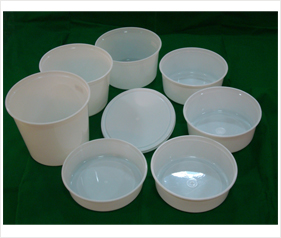 Plastic Disposable Containers