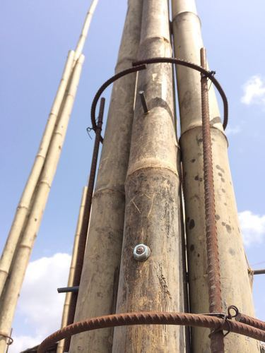 Dry Bamboo Pole