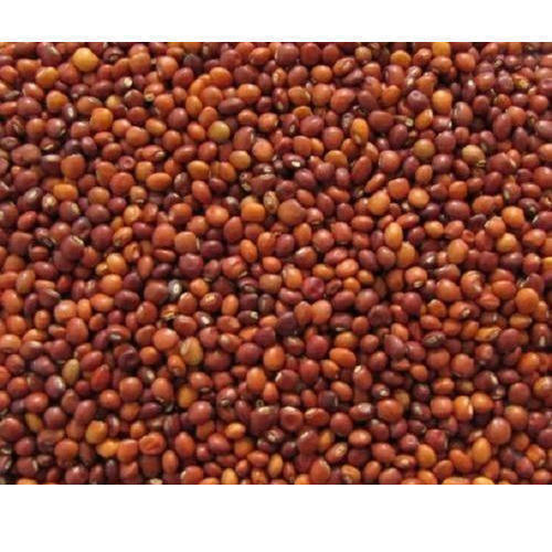 Natural Toor Seeds