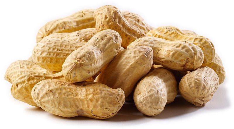 Raw Groundnuts