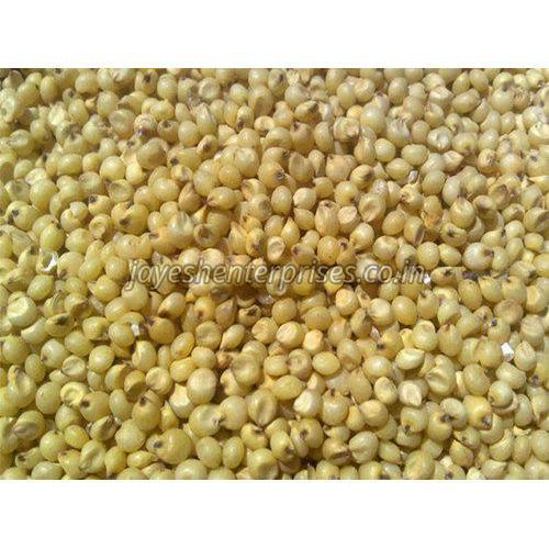 Pure Natural Jowar Seeds