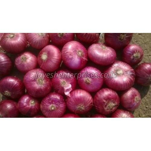 Pure Red Onion