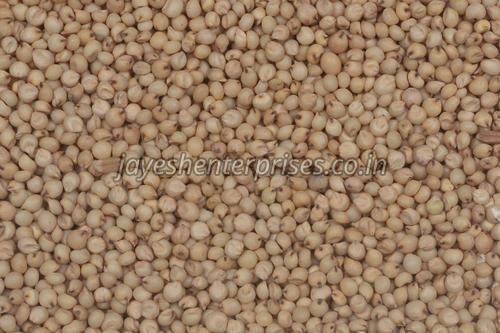 White Jowar Seeds