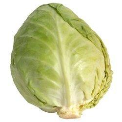 Fresh Natural Cabbage
