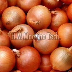 Natural Brown Onion