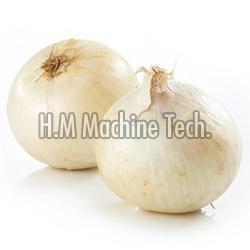 Natural White Onion
