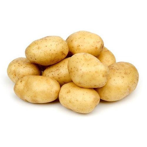 Fresh Indian Potato
