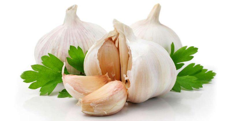 Fresh Natural Garlic