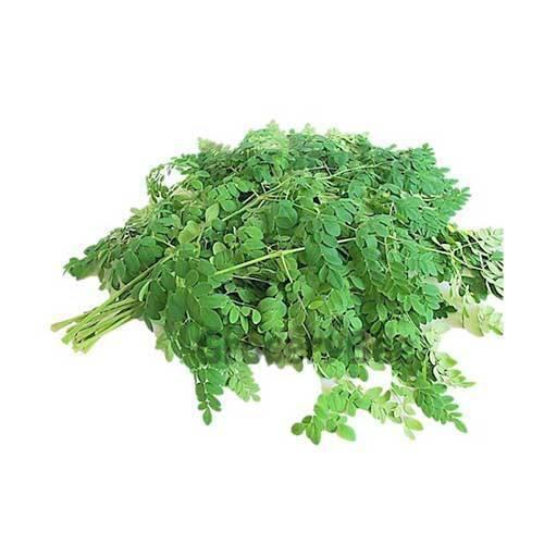 Natural Moringa Leaves