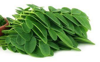 Organic Moringa Leaves