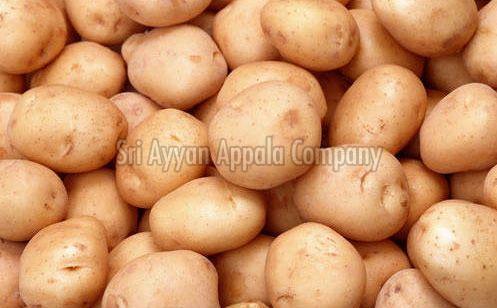 Fresh Chipsona Potato