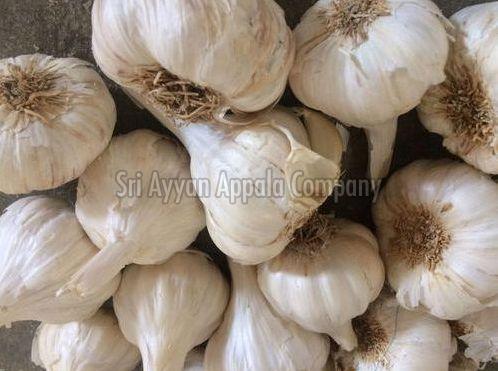 Fresh Indian Garlic