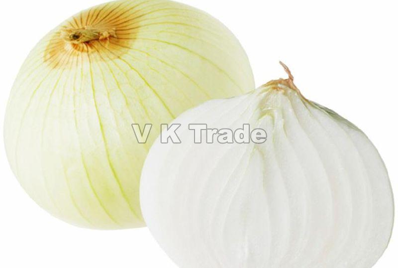 Best Quality White Onion