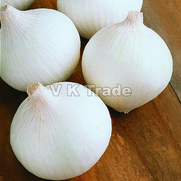 Big White Onion