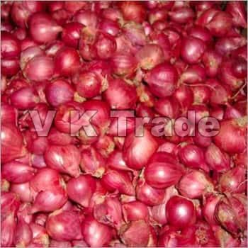 Fresh Small Red Onion