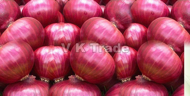 Pure Organic Red Onion