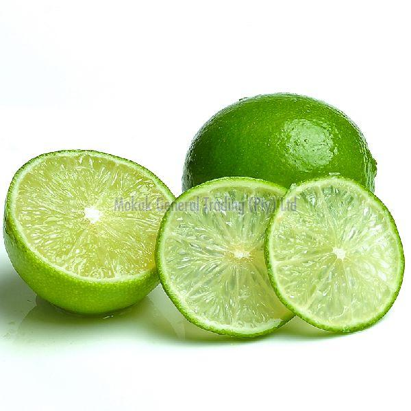 Seedless Lime - Manufacturer Exporter Supplier in South Africa