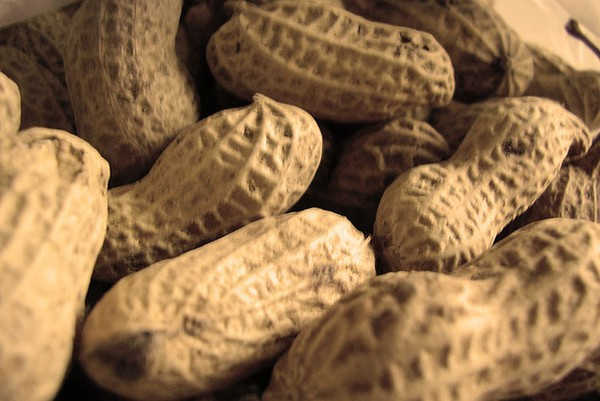 Bold Shelled Peanuts