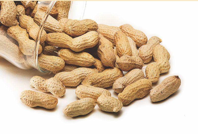 Java Shelled Peanuts