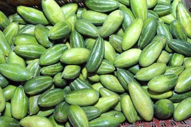 Fresh Parwal