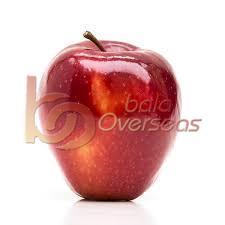 Fresh Water Apple