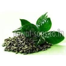 Organic Green Tea Leaf