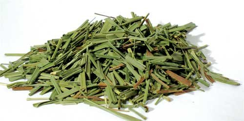 Lemongrass Herbs