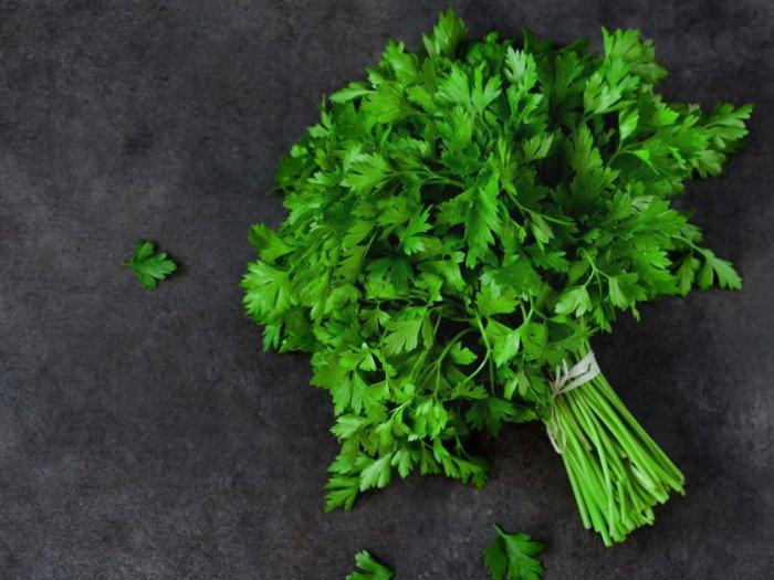 Parsley Herbs