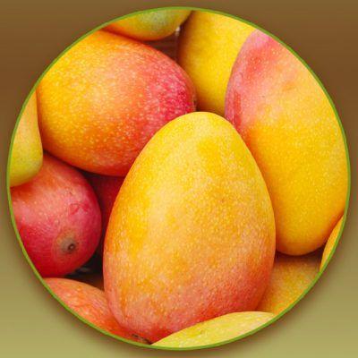 Mango Flavour Blunts Rolls 01