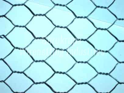 Hexagonal Wire Mesh Exporter