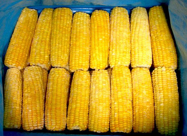 Frozen Cob Corn 02