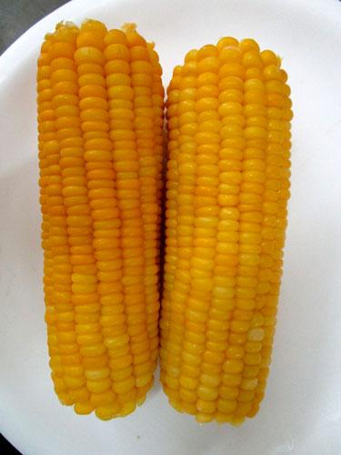 Frozen Cob Corn 03