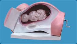 Advanced Surgical Suture Leg