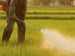 Agricultural Insecticides