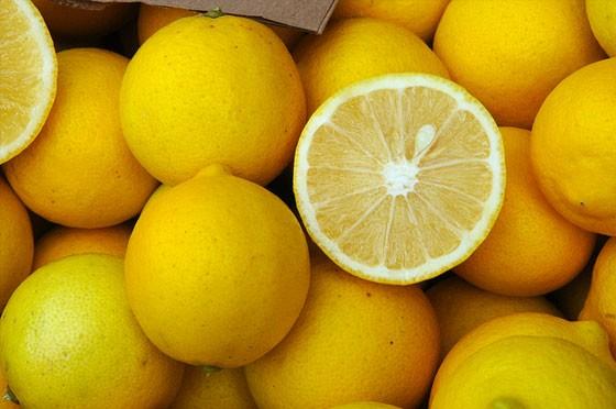Fresh Lemon 02