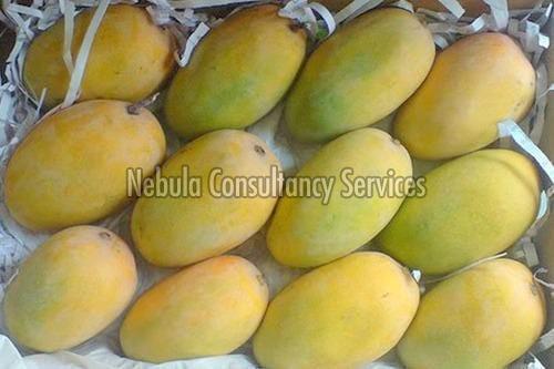 Fresh Lalbagh Mango