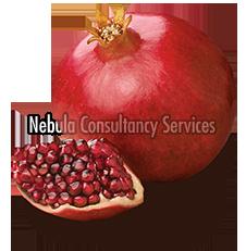 Fresh Sweet Pomegranate