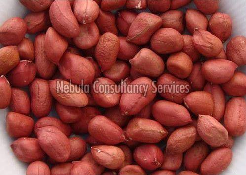 Organic Groundnut Kernels