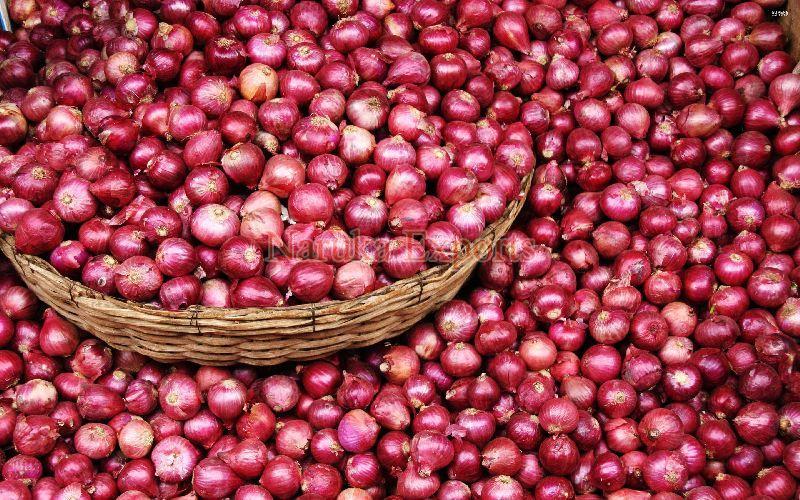 Fresh Rose Onion