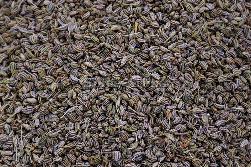 Dried Carom Seeds