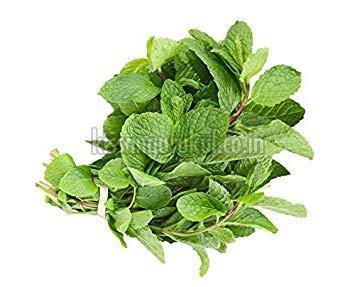 Organic Mint Leaves